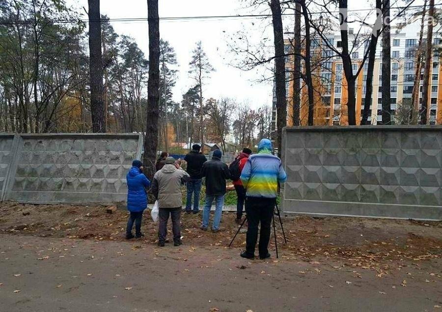 Колючий дріт навпроти першої школи демонтують, фото-3