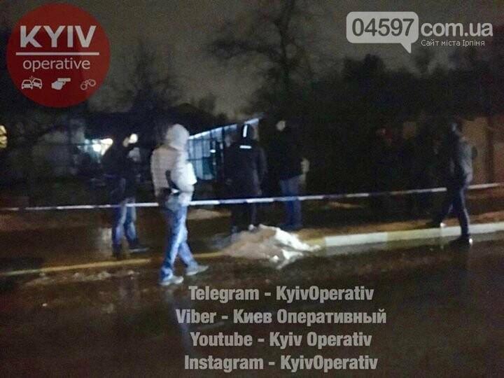 Резонансне вбивство пенсіонерів в Ірпені: деталі злочину, фото-3
