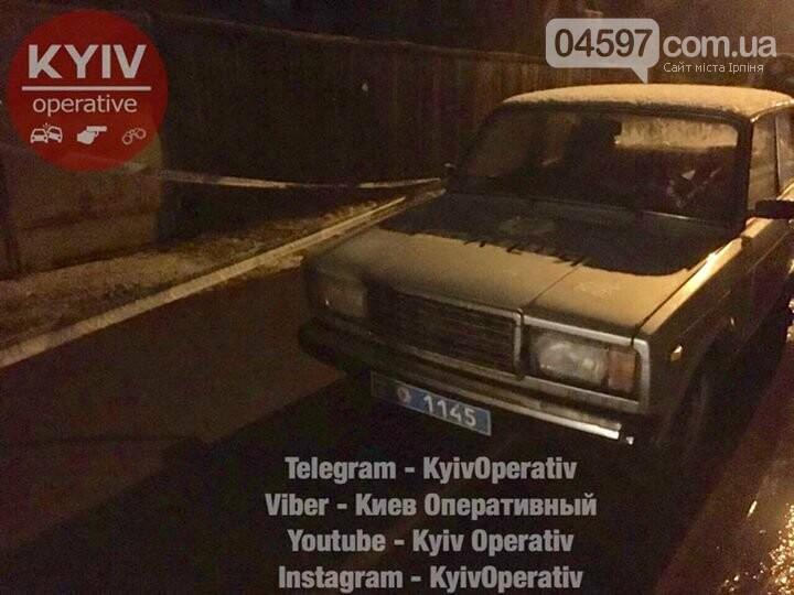 Резонансне вбивство пенсіонерів в Ірпені: деталі злочину, фото-4