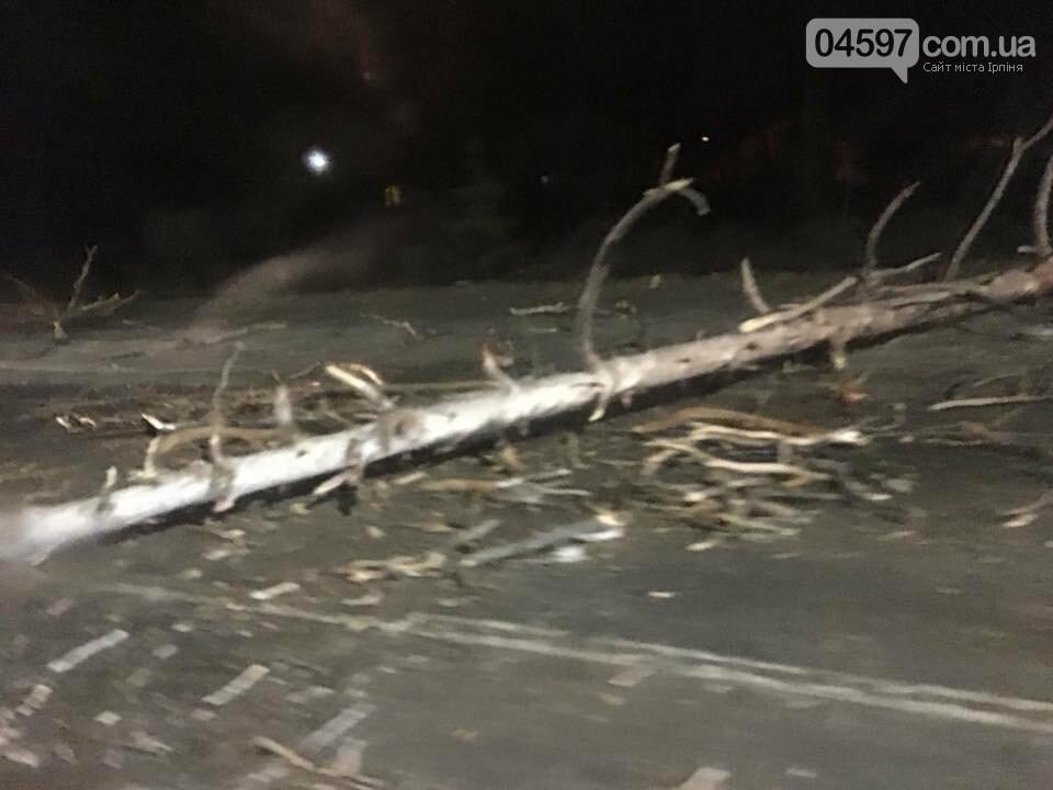 Повалені дерева, обірвані електродроти – наслідки сильного вітру в Ірпінському регіоні, фото-9