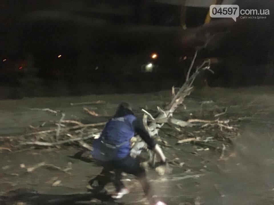 Повалені дерева, обірвані електродроти – наслідки сильного вітру в Ірпінському регіоні, фото-8