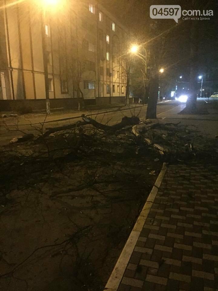 Повалені дерева, обірвані електродроти – наслідки сильного вітру в Ірпінському регіоні, фото-7