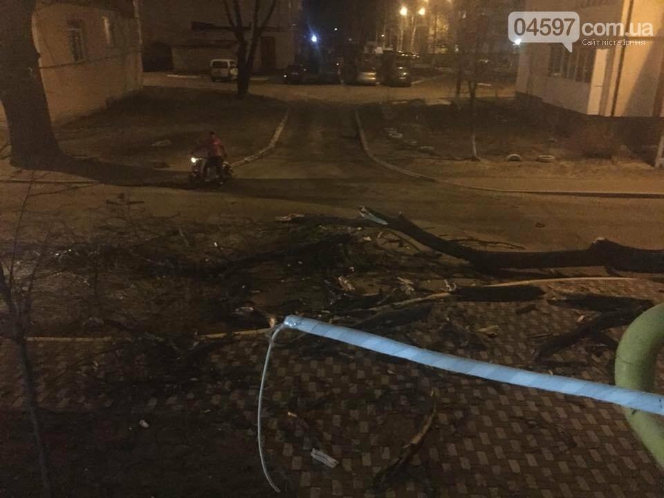 Повалені дерева, обірвані електродроти – наслідки сильного вітру в Ірпінському регіоні, фото-5