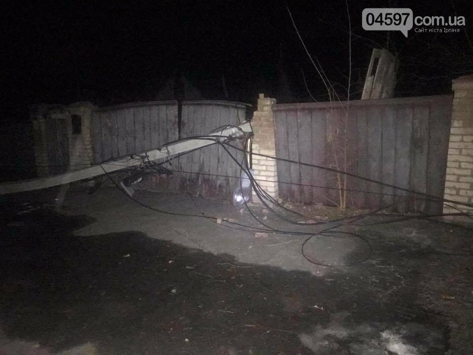 Повалені дерева, обірвані електродроти – наслідки сильного вітру в Ірпінському регіоні, фото-1