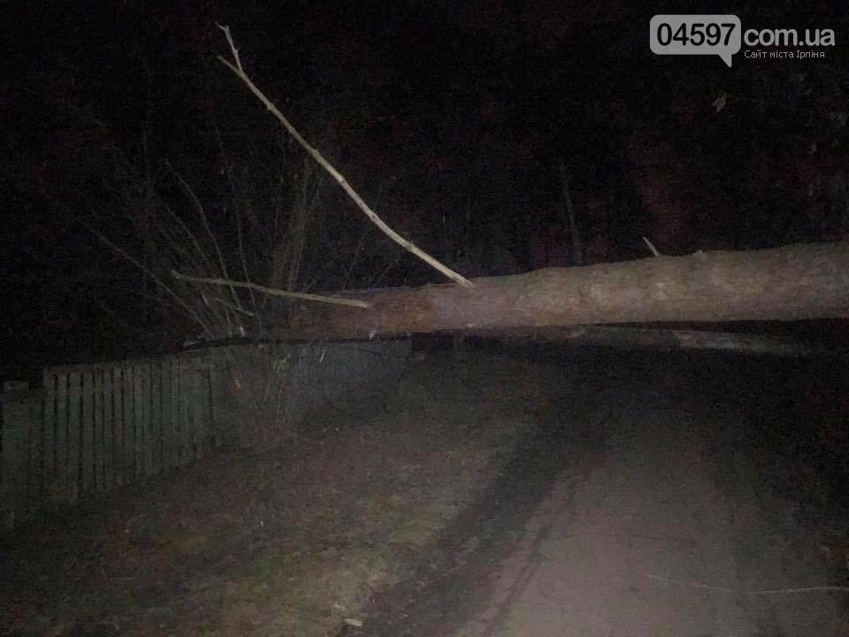 Повалені дерева, обірвані електродроти – наслідки сильного вітру в Ірпінському регіоні, фото-3