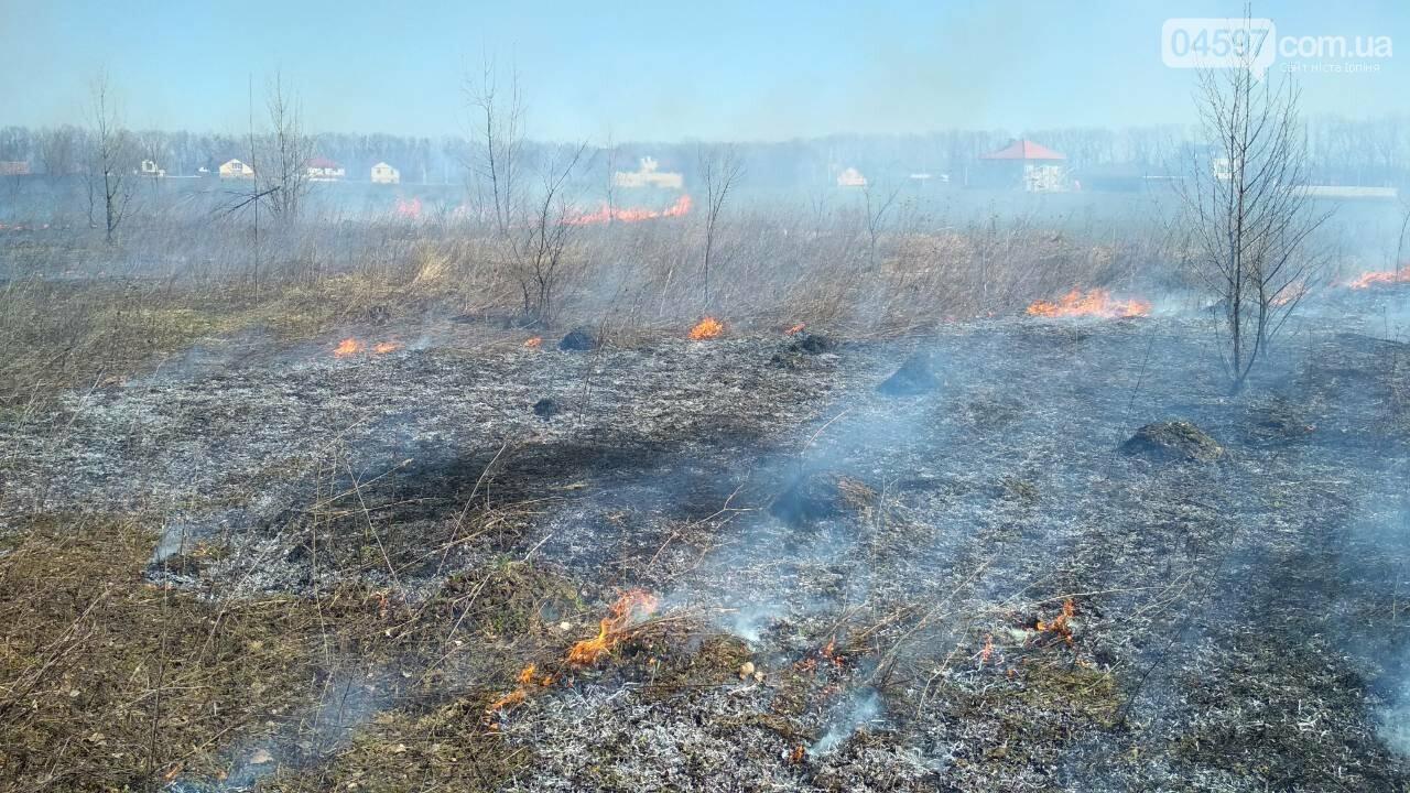 За вихідні рятувальники ліквідували 27 осередків загорання трав'яного настилу в Ірпінському регіоні, фото-1