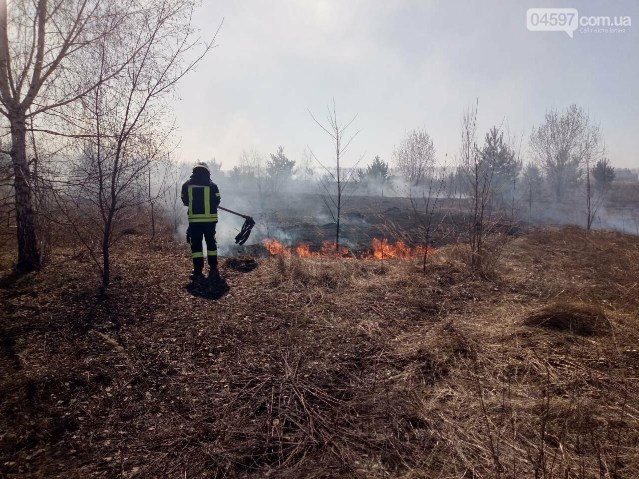 За вихідні рятувальники ліквідували 27 осередків загорання трав'яного настилу в Ірпінському регіоні, фото-2