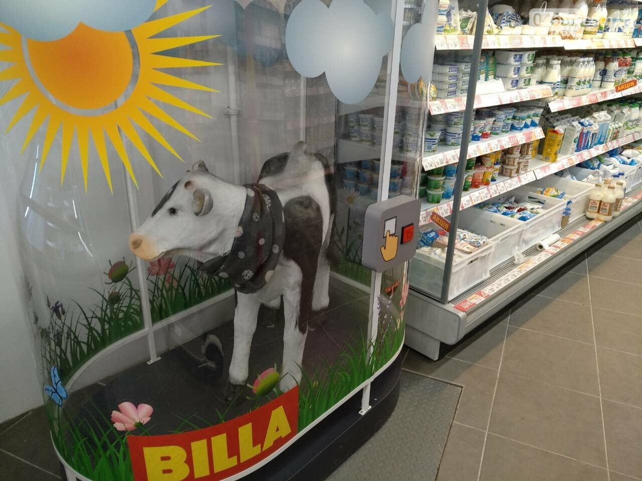 В Ірпені відкрився супермаркет Billa, фото-3