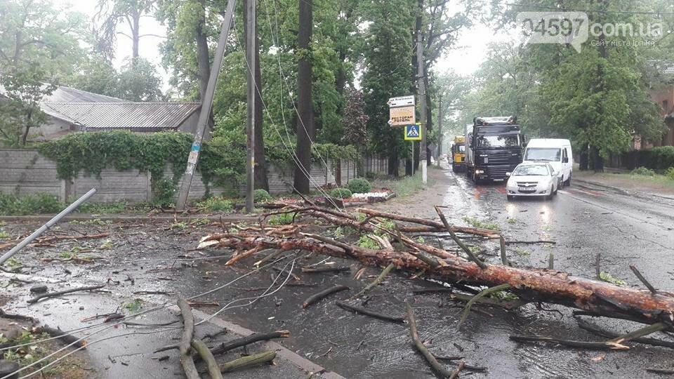 У Бучі на Газель впало дерево, є постраждалі, фото-2