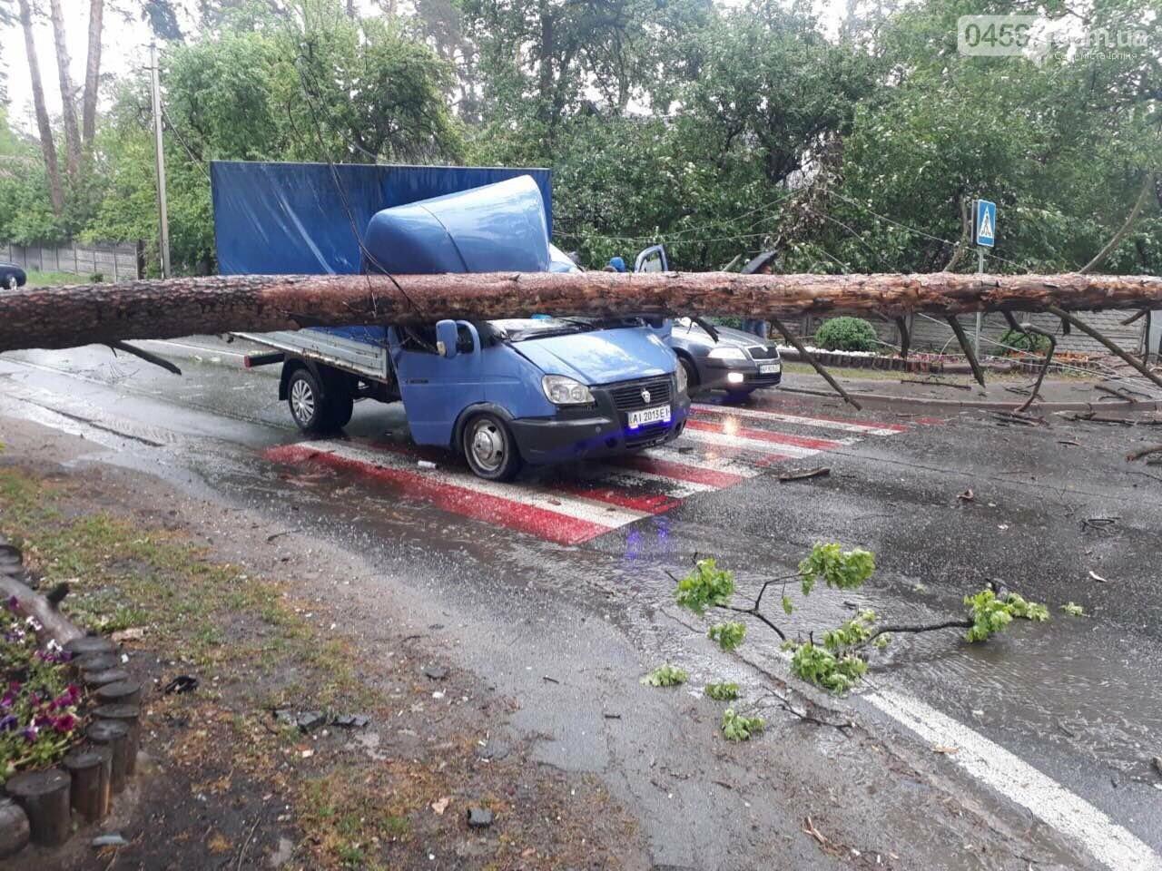 У Бучі на Газель впало дерево, є постраждалі, фото-1