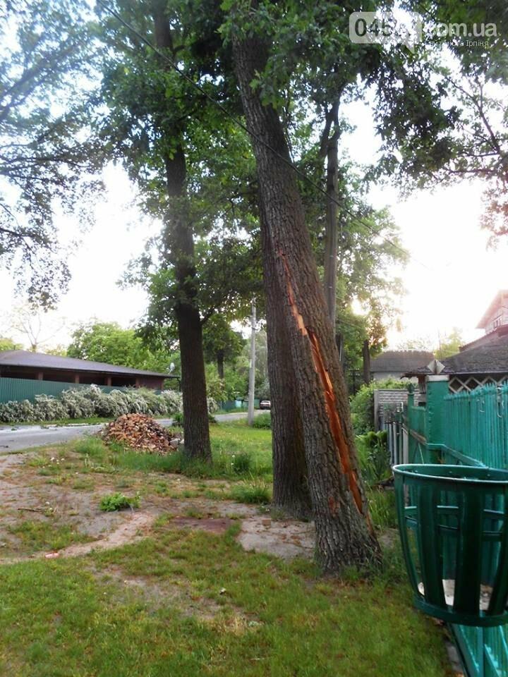 Повалені дерева, обірвані електродроти: як пройшли вихідні в регіоні, фото-4