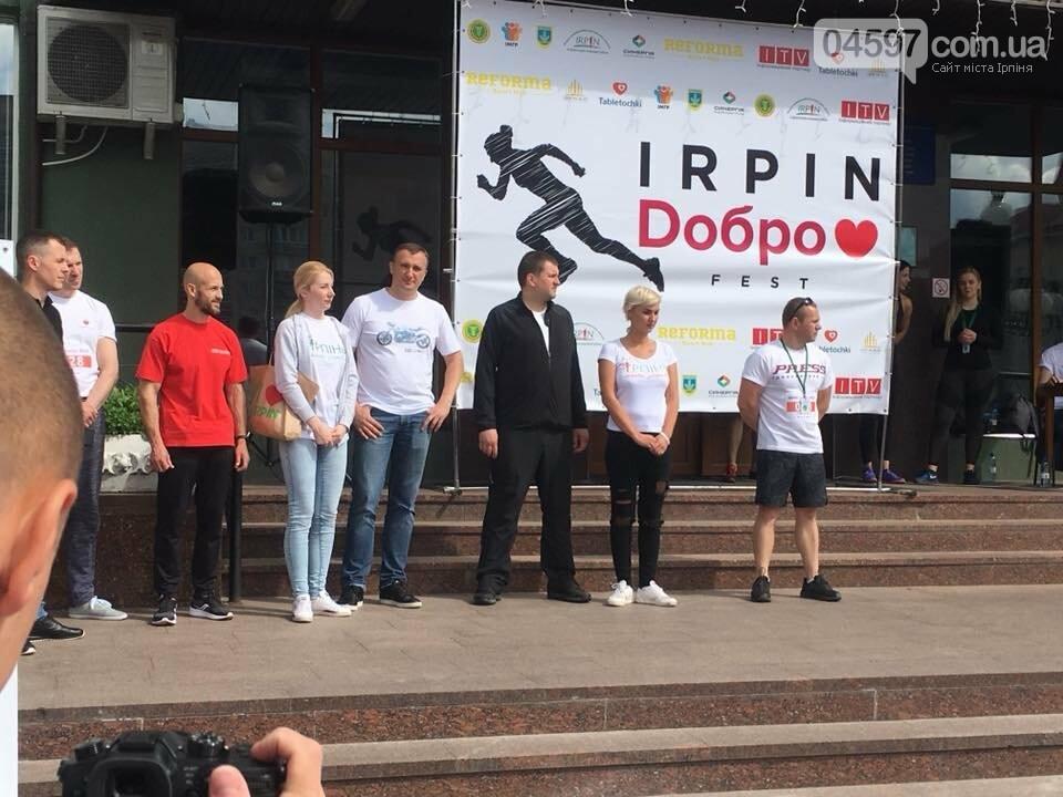 В Ірпені пройшов Irpin Doбро FEST, фото-5