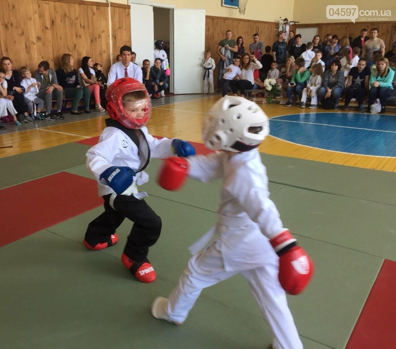 У Гостомелі пройшов дитячий турнір з карате, фото-4
