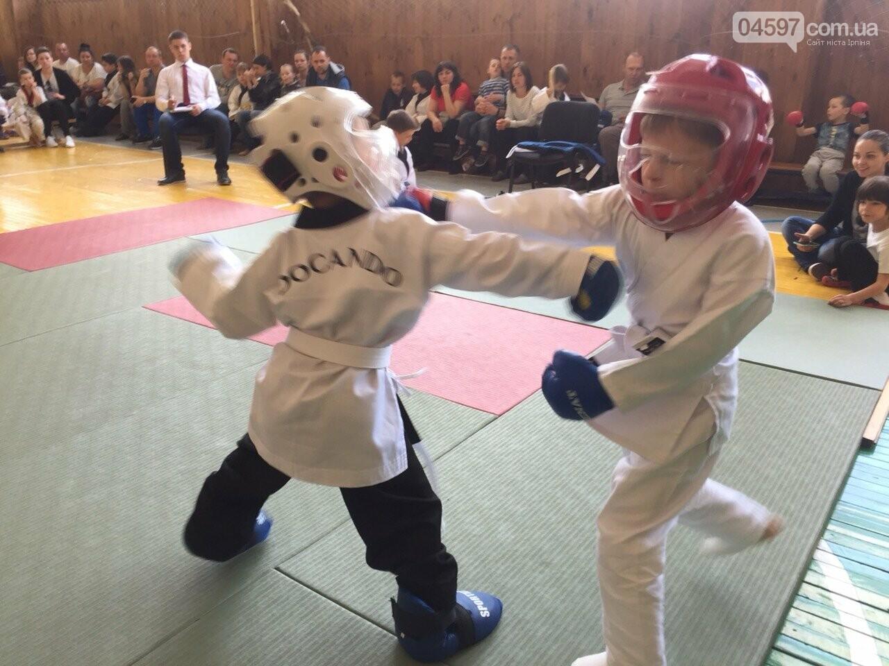 У Гостомелі пройшов дитячий турнір з карате, фото-5