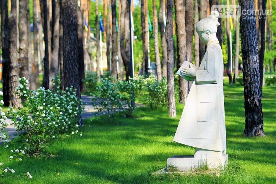 Ірпінь відзначає міжнародний день парків, фото-4
