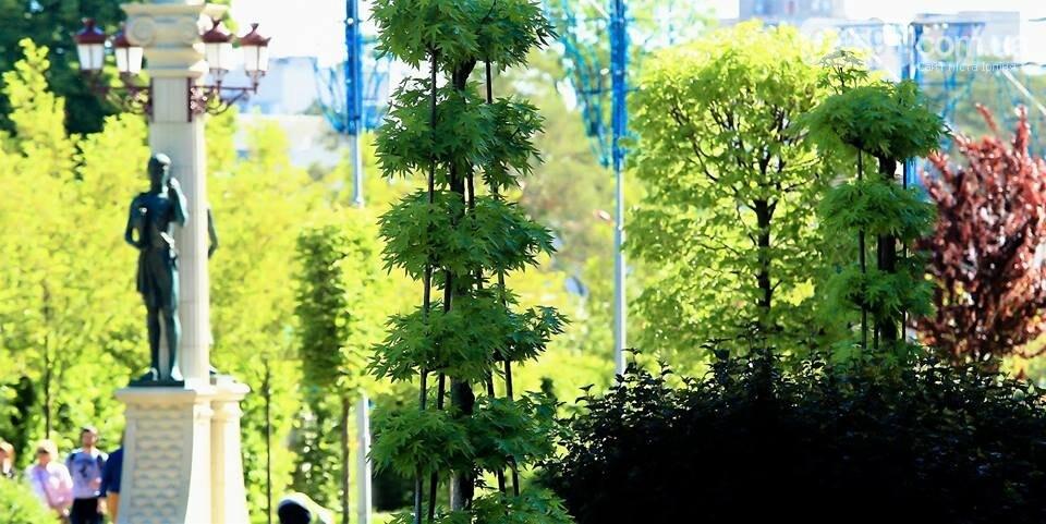 Ірпінь відзначає міжнародний день парків, фото-5