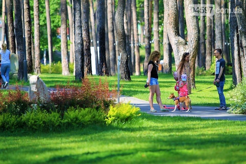 Ірпінь відзначає міжнародний день парків, фото-12