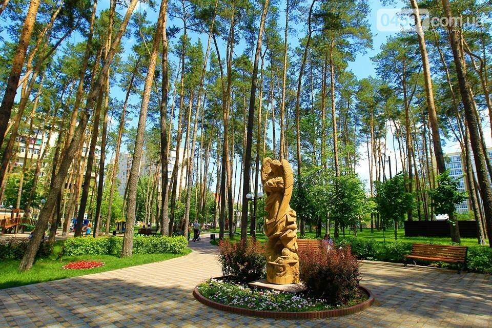 Ірпінь відзначає міжнародний день парків, фото-22