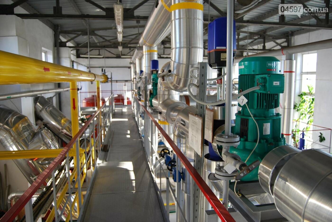 Теплокомунсервіс: від збиткового підприємства до флагмана галузі теплопостачання в регіоні, фото-3