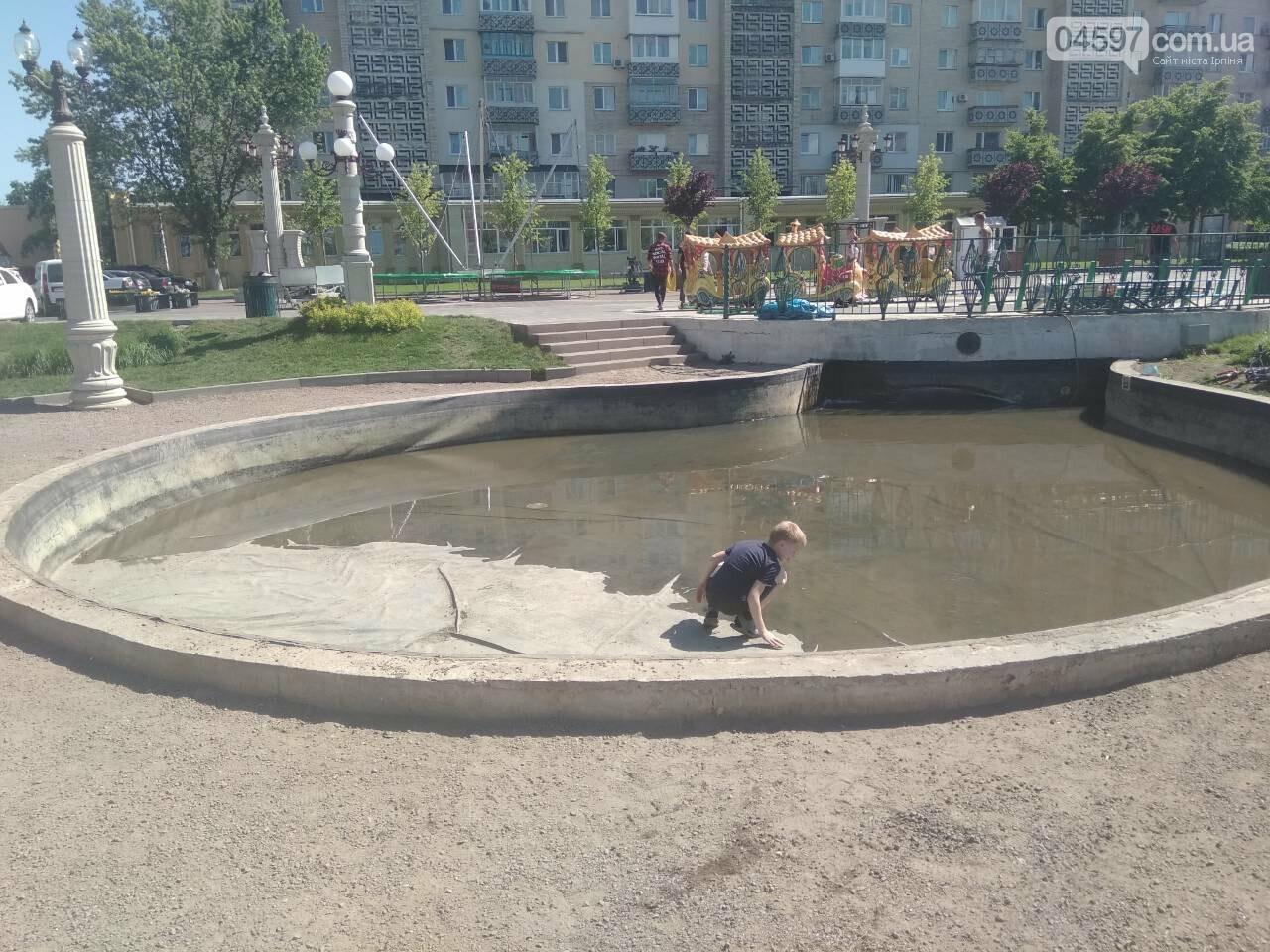 В центрі Ірпеня почистили штучне озеро , фото-3