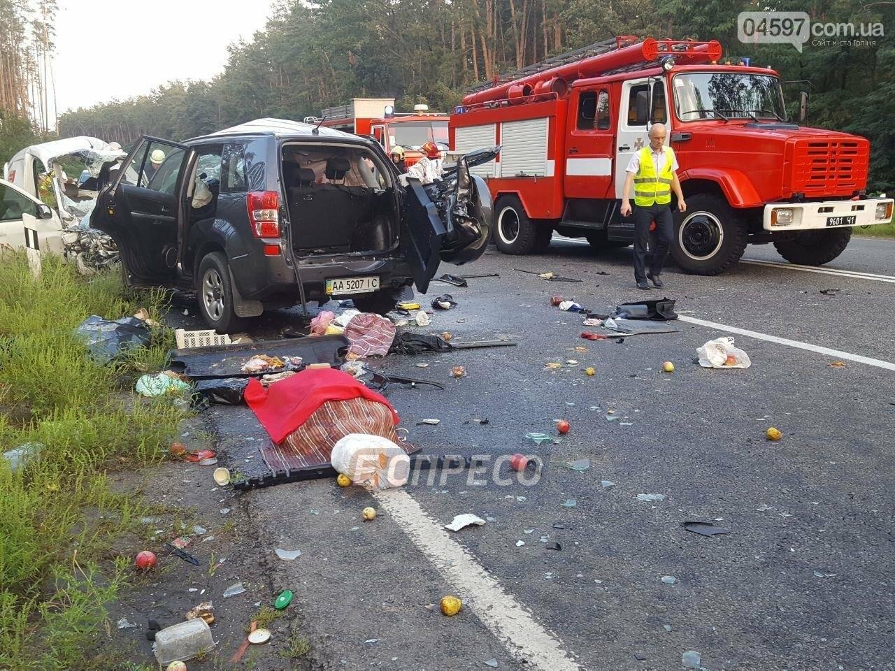 Смертельна ДТП на Новоірпінській трасі: 4 загиблих, 3 постраждалих, фото-6