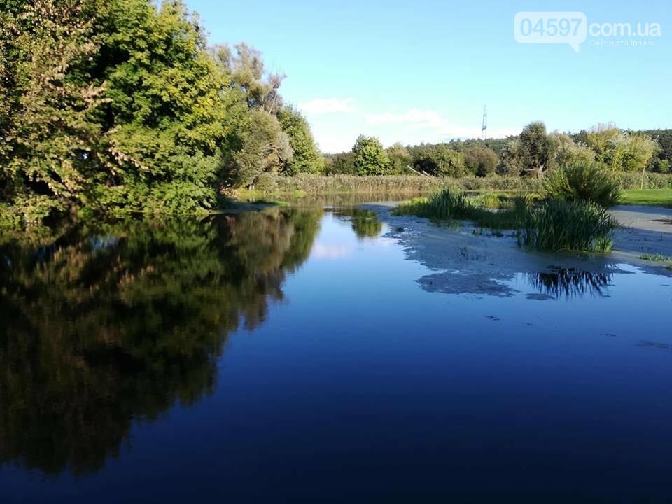 """Плешко пропонує створити рух """"За чисту річку Ірпінь"""", фото-2"""