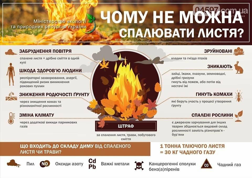 Спалювати не можна: куди подіти листя в Ірпені, фото-1