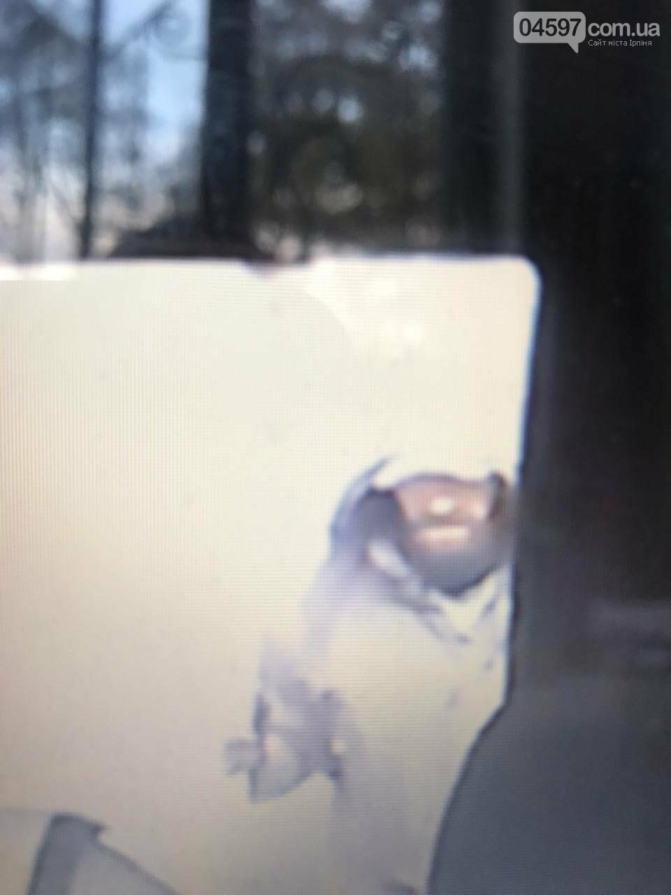 ПриватБанк оприлюднив фото нападника на інкасаторське авто в Ірпені, фото-1