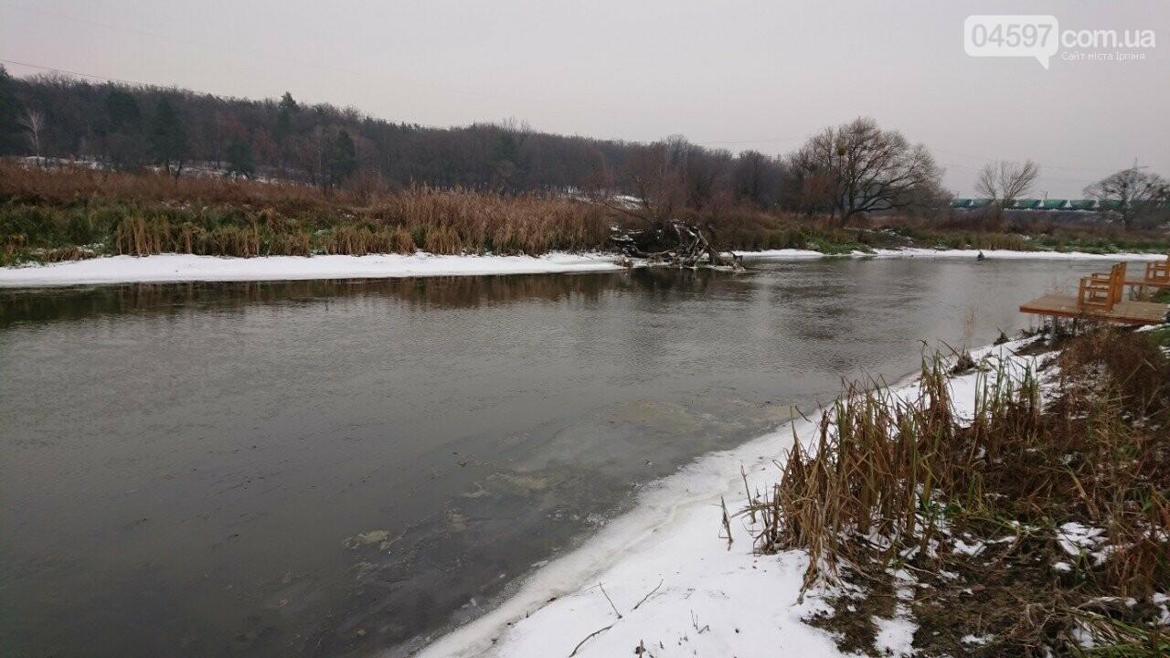 Ірпінчани занепокоєні станом річки Ірпінь, фото-3