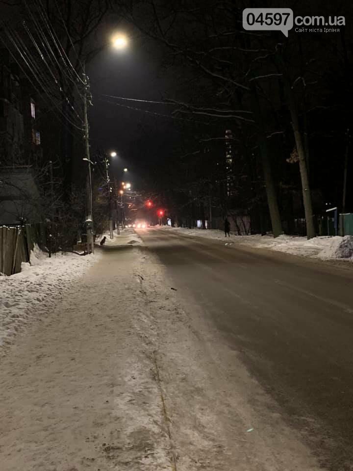 В Ірпені встановили нове вуличне LED-освітлення, фото-1
