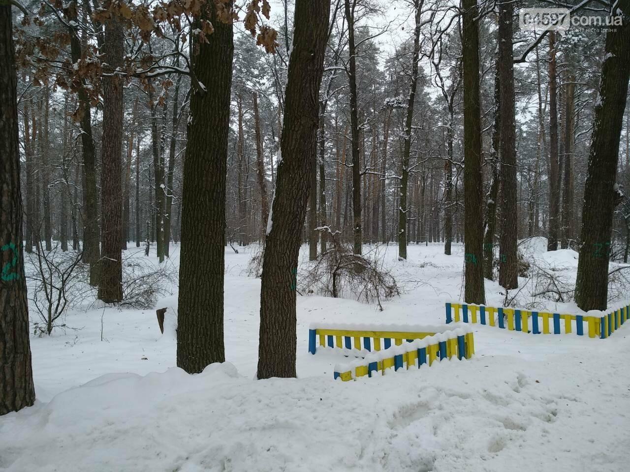 """Анастасія Попсуй про долю парку """"Мужеловський"""", фото-1"""