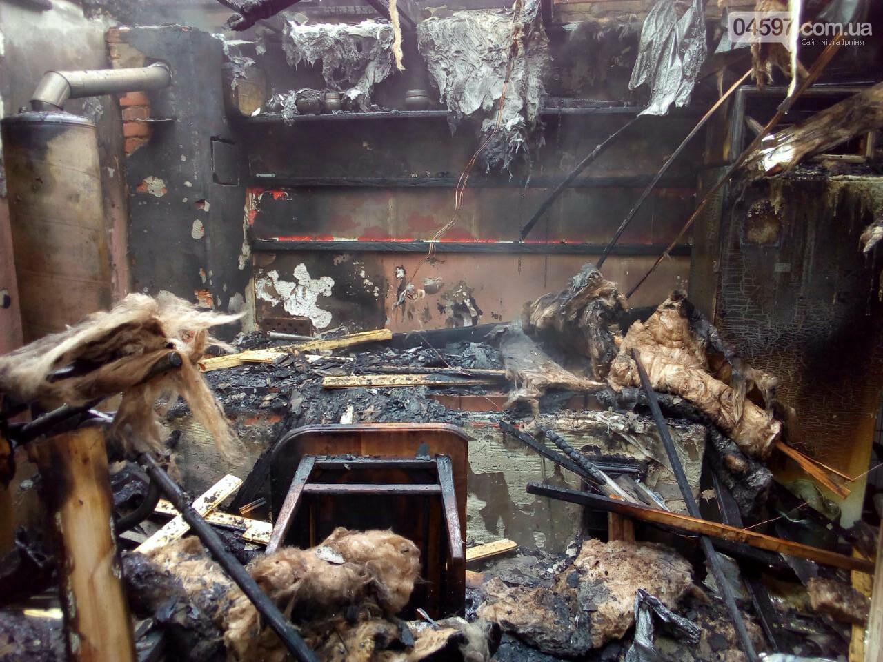 В Ірпені згоріла приватна лазня, фото-1