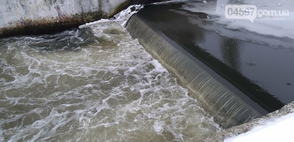 Ірпінь звертається до Держводгоспу щодо загибелі риби, фото-1
