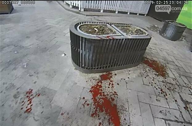 Жорстока бійка в центрі Ірпеня - фото, відео, фото-6