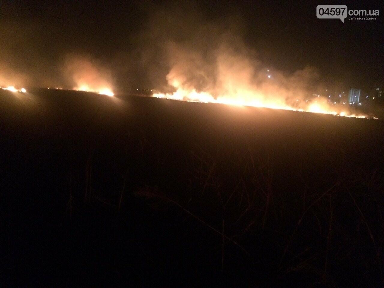 Горіла заплава: масштабна пожежа в Ірпені, фото-2