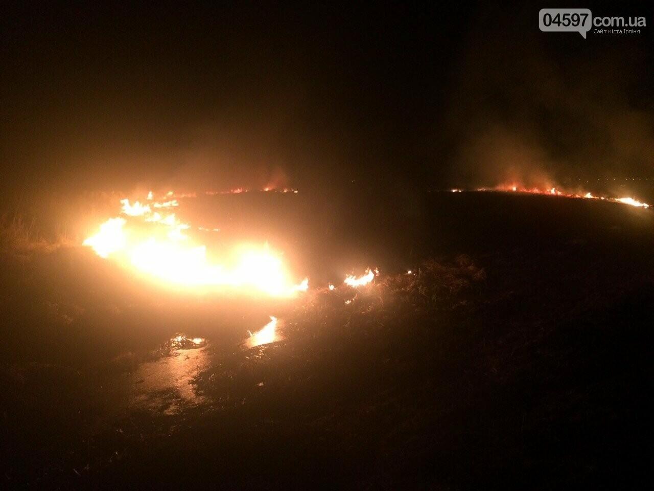 Горіла заплава: масштабна пожежа в Ірпені, фото-3