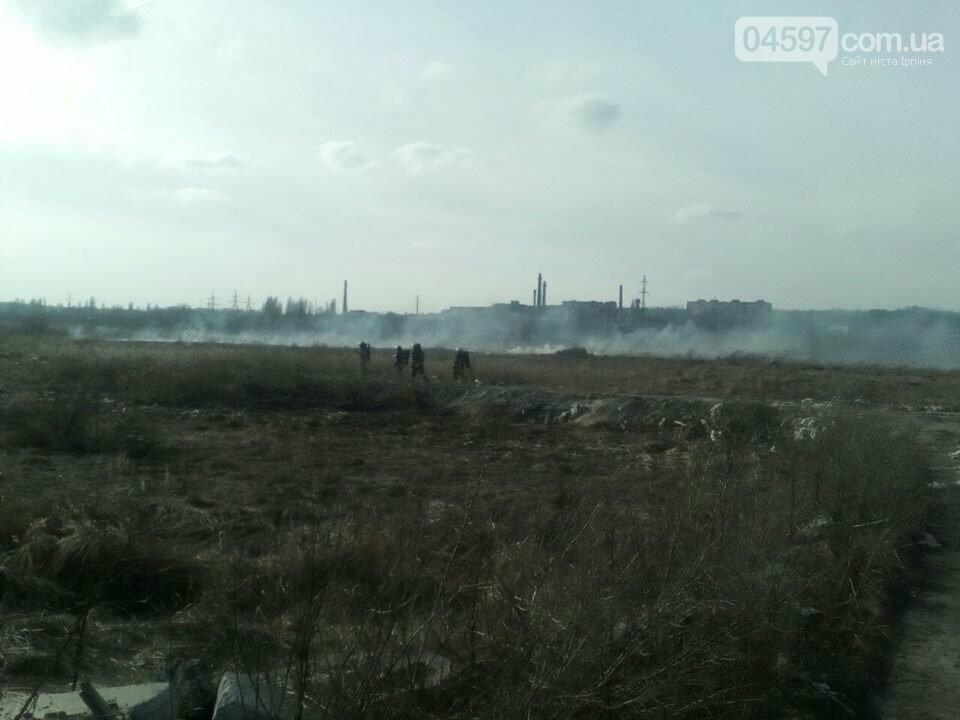 За вихідні в Приірпінні вигоріло майже 6 га сухої трави, фото-3