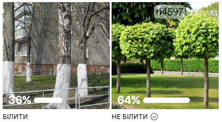 Білити чи не білити дерева та бордюри в Ірпені: опитування, фото-1