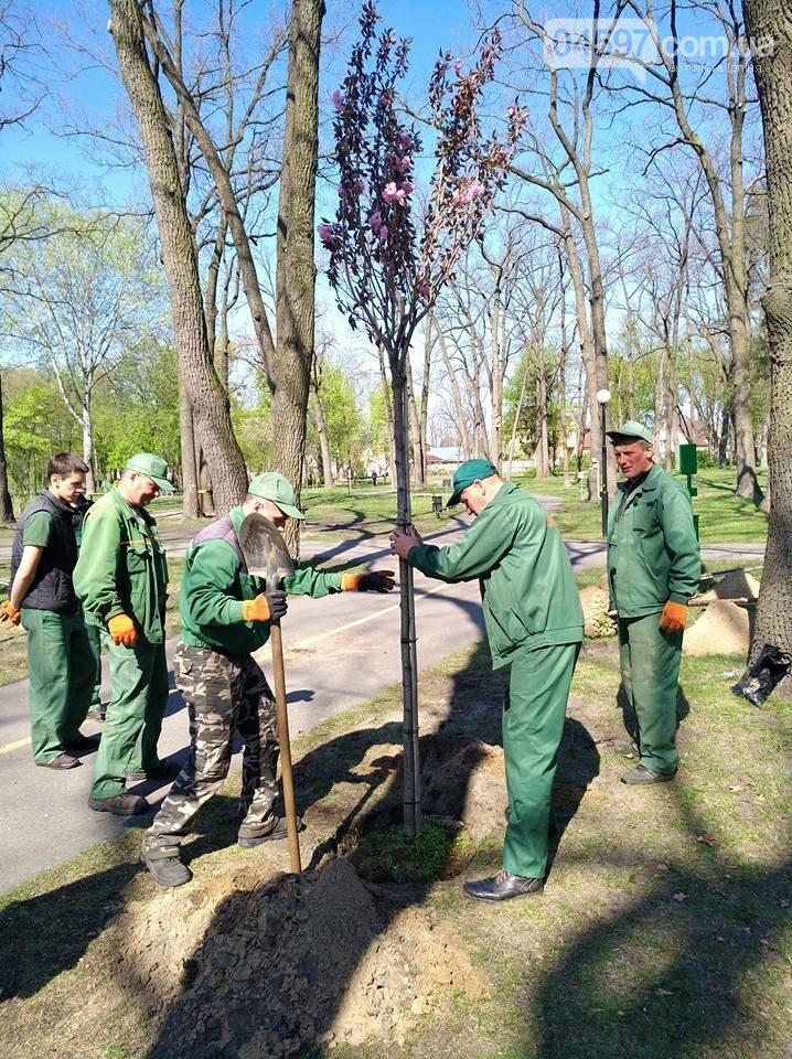 В Ірпені планують масштабні висадки дерев, фото-3