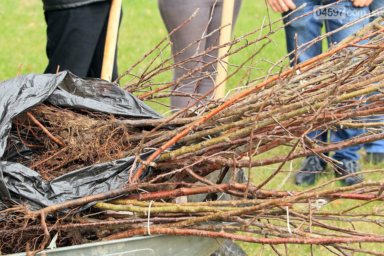 В Ірпені буде 5 тисяч нових дерев, фото-1