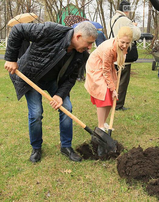 В Ірпені буде 5 тисяч нових дерев, фото-3