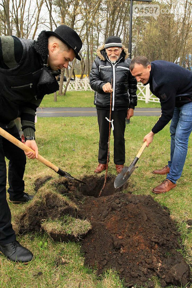 В Ірпені буде 5 тисяч нових дерев, фото-5