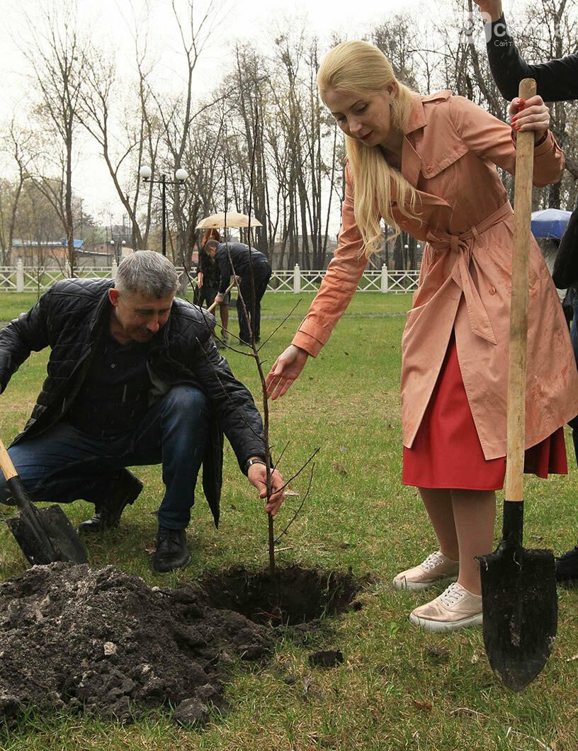 В Ірпені буде 5 тисяч нових дерев, фото-6