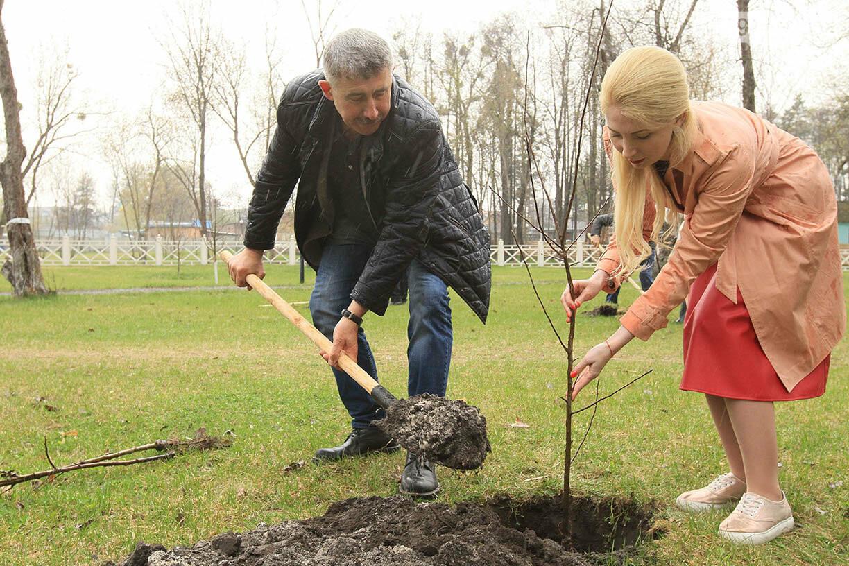 В Ірпені буде 5 тисяч нових дерев, фото-7