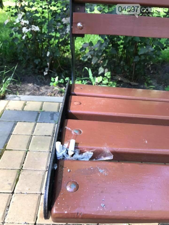 Свинство в місті, або як побороти вандалізм в Ірпені, фото-2