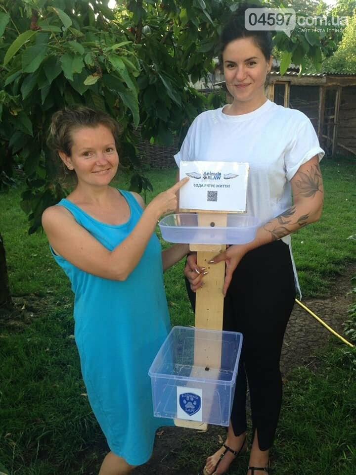 В Ірпені зоозахисники встановили ємкості з водою для безпритульних тварин, фото-3