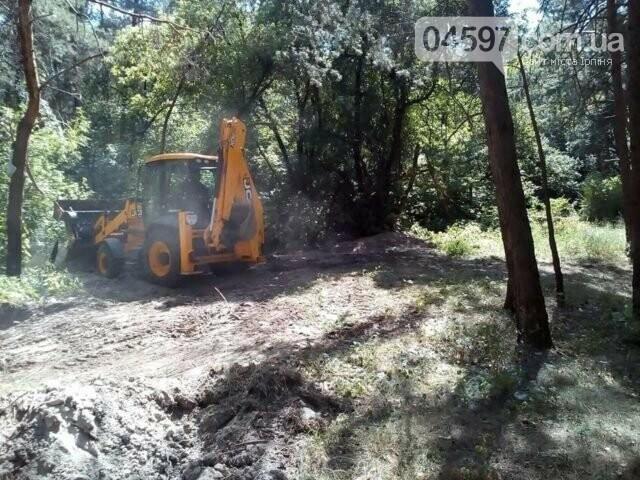 Ірпінське лісництво влаштувало прибирання лісу, фото-2
