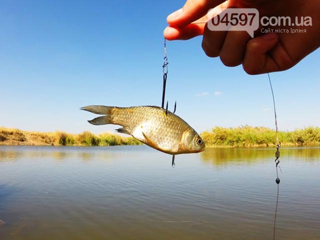 До уваги рибалкам: У Коцюбинському відбудуться змагання з ловлі риби, фото-1