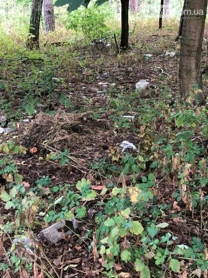 Люди - свині, або що робиться в ірпінському лісі, фото-2