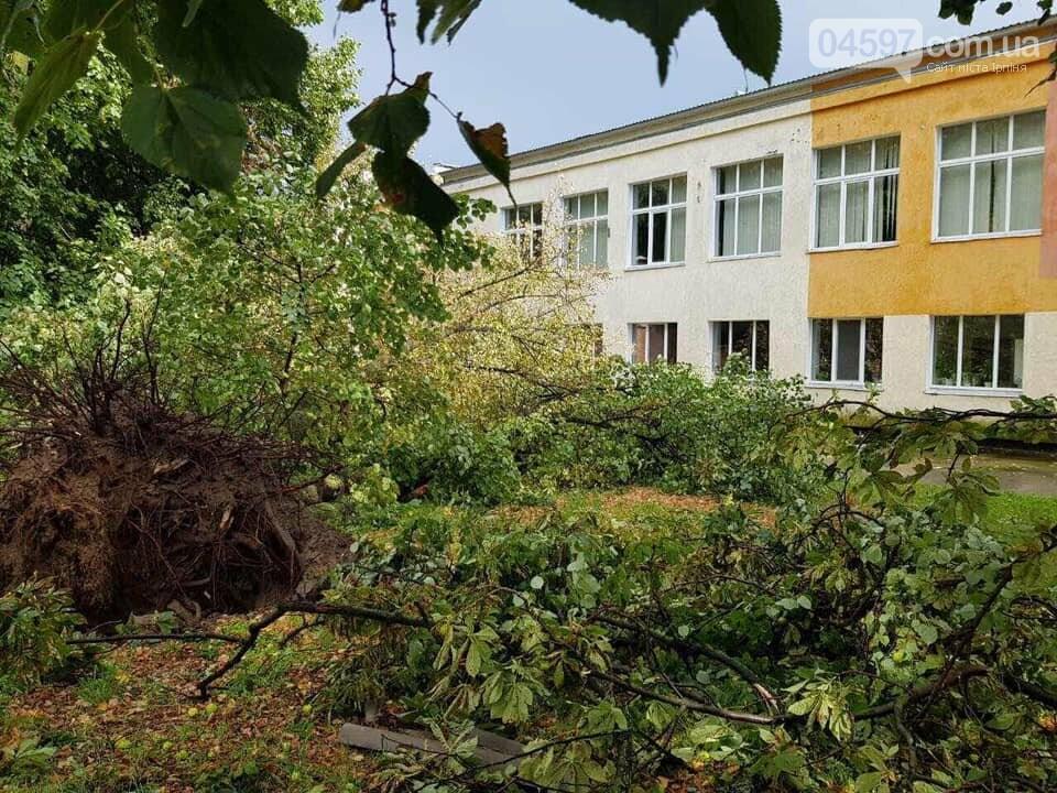 У Бучі буревій повиривав з коренем дерева, фото-2